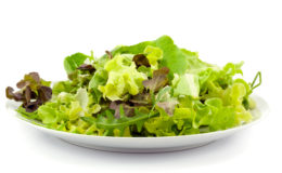 mixed fresh salad